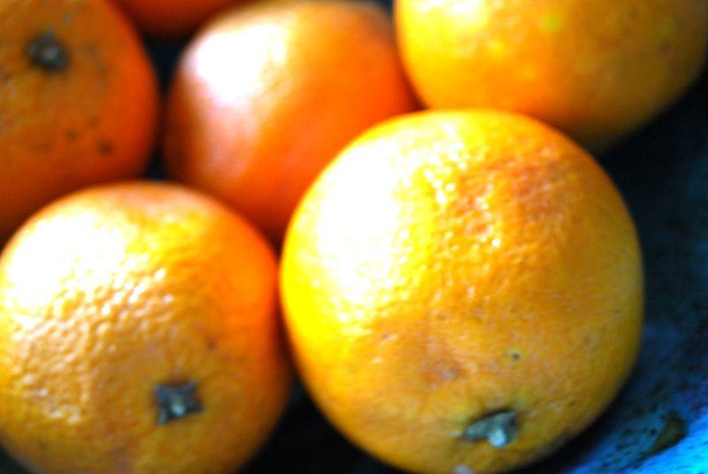 My Favorite Thing: Oranges.
