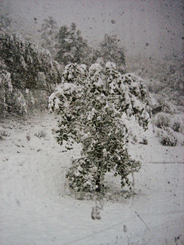 neige en juin