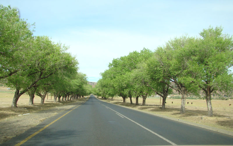 Driving North towards Teyateyaneng