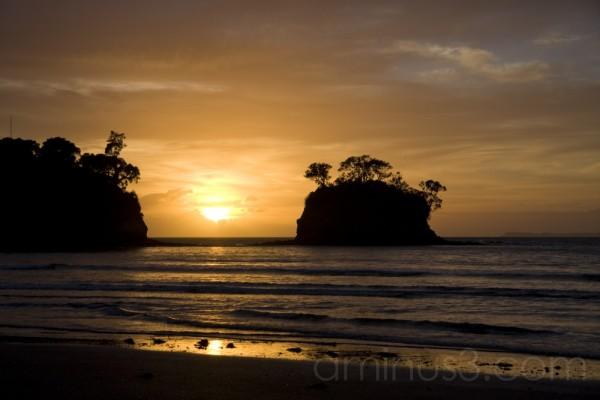 Sunrise at waiake beach