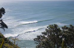 Surf at Piha Beach