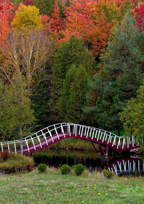 Autumn in St-Adolphe d'Howard