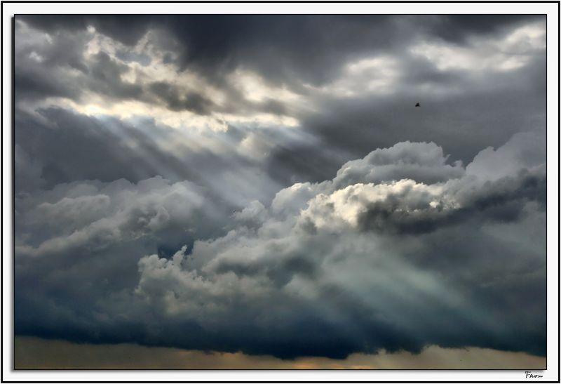 Rays  of hope ...