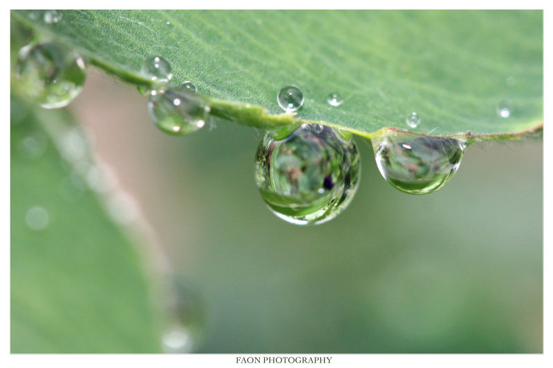 I'm back with droplets ...