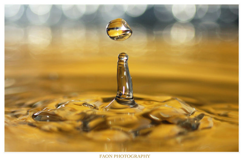 Water Gold ...