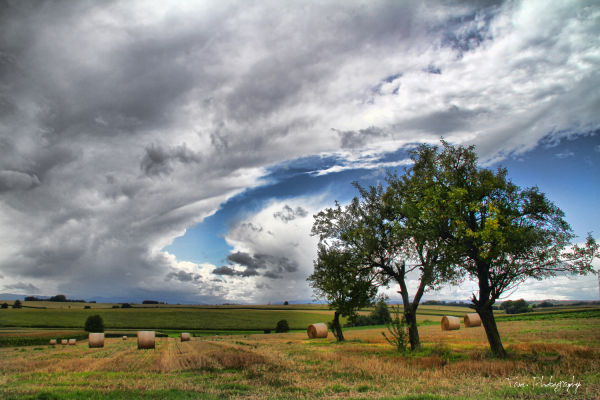 Cloudy tornado ...