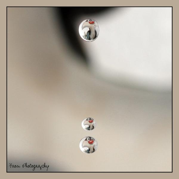 Water drops ;-)