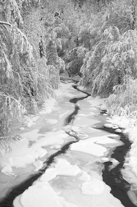 freezing river II