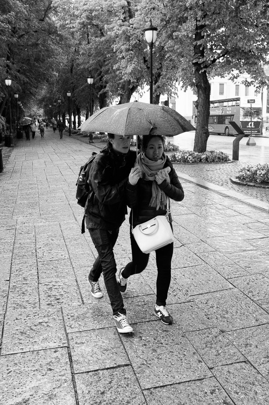 A Rainy Day in Oslo - IV