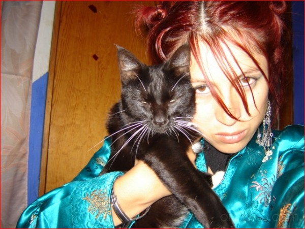 Pichancha mi gato