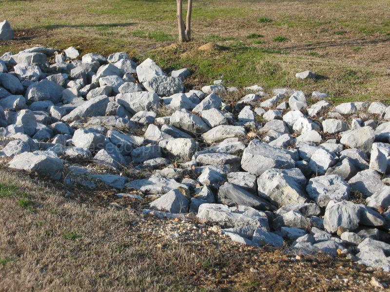 r for rocks