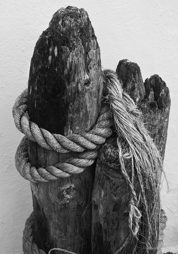 Old wood, old rope
