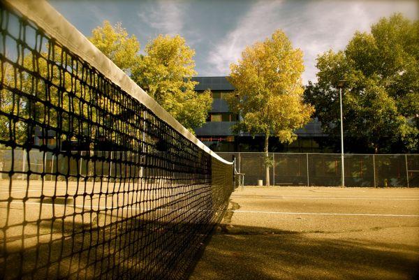 Autumn Tennis II
