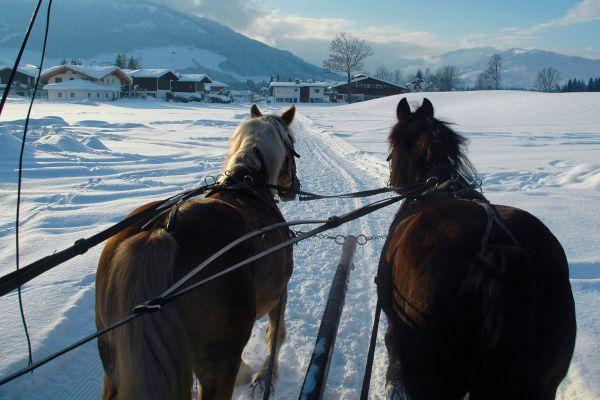 sleighbells ring...