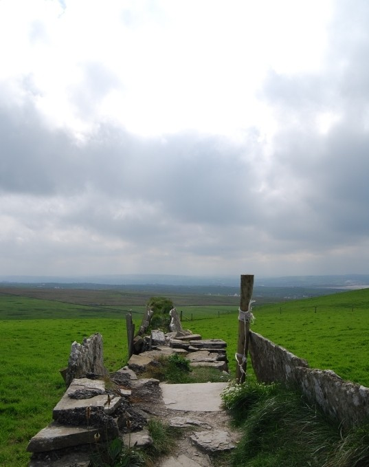 An Old Irish Wall