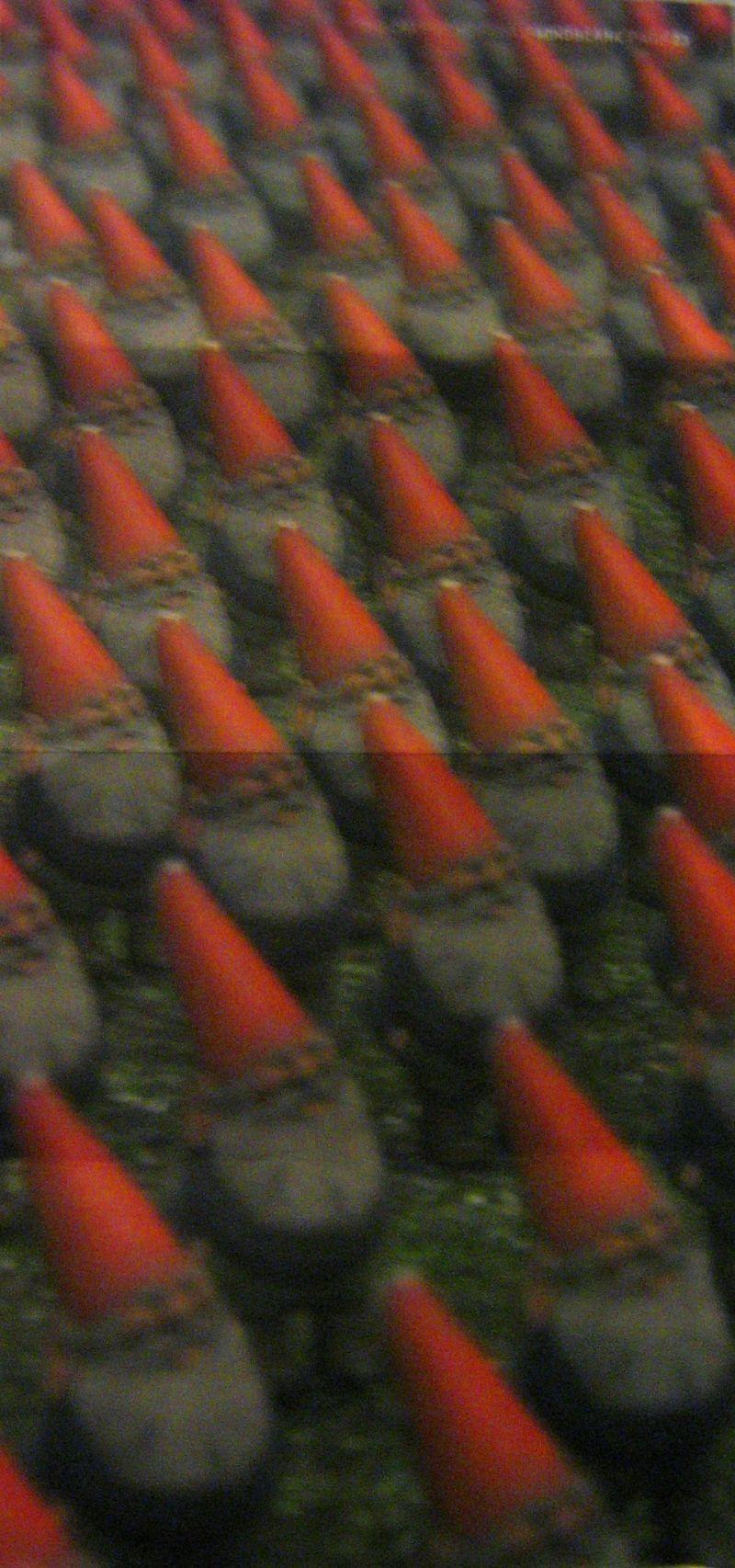 Day 198: Gnomes