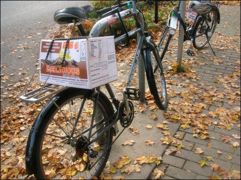 Bike shoppers