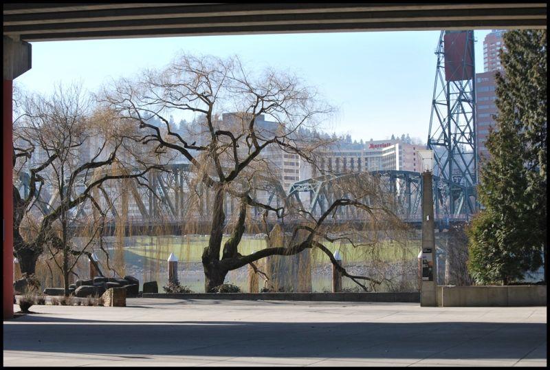 bridges Portland