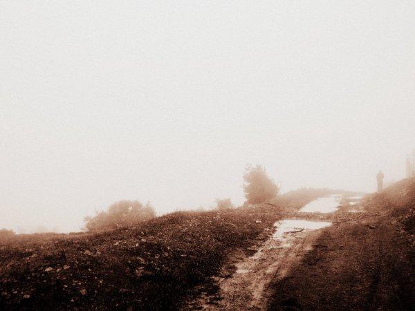 Lost In Fog