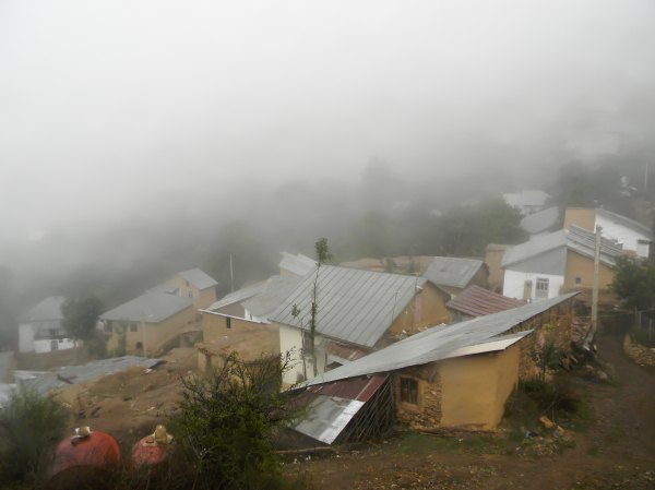 Village In Fog