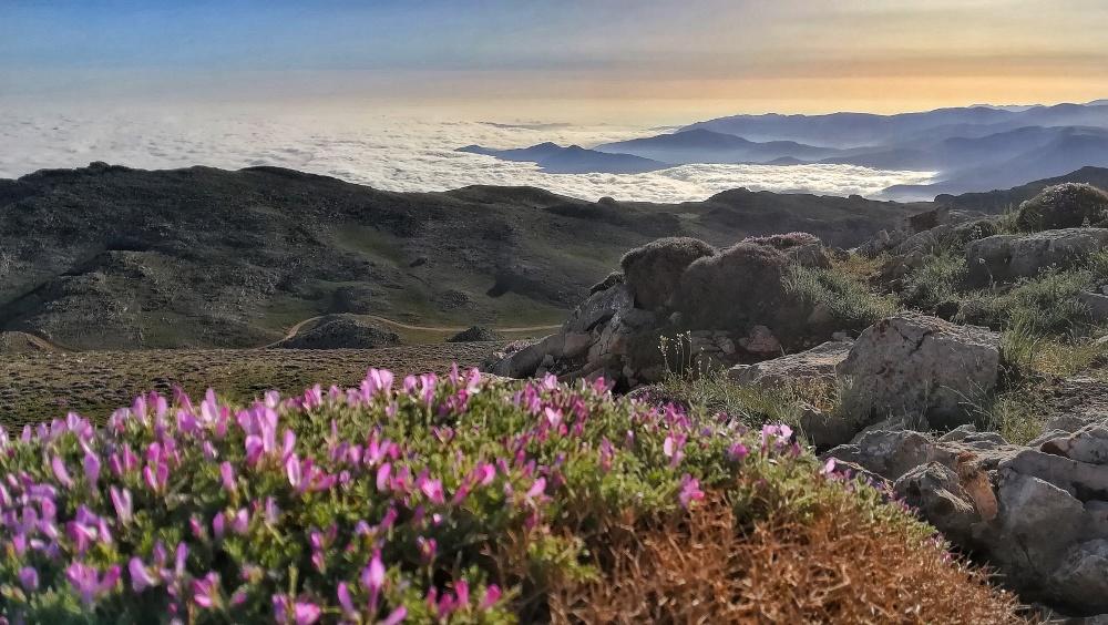 چشم اندازی از بالای قله درفک