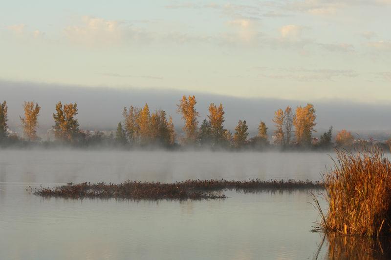 Paysage du matin d'automne