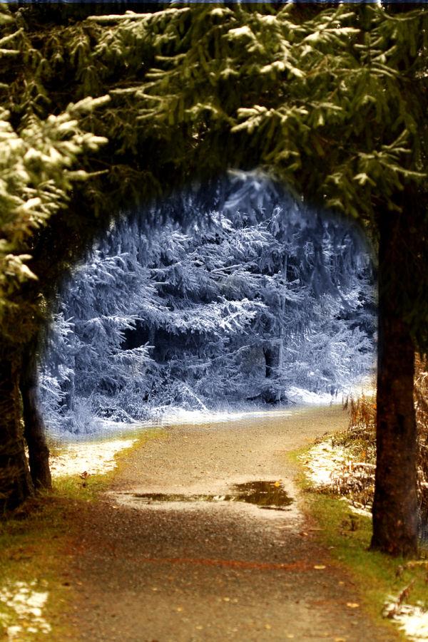 Chemin boise
