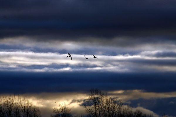 Au dessus des nuages