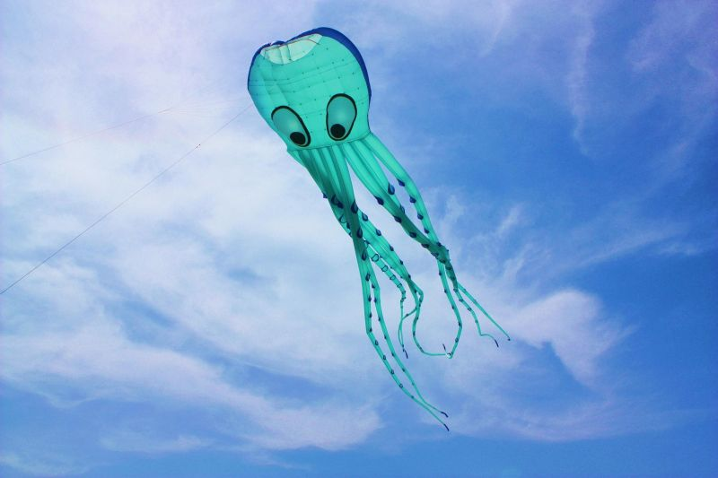 ...it's... a Flying Squid!