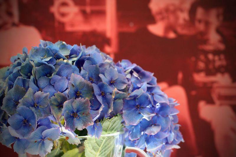 flowers/punk