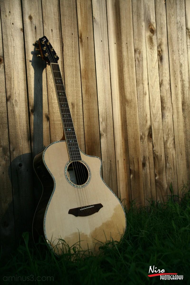 Breedlove Guitar