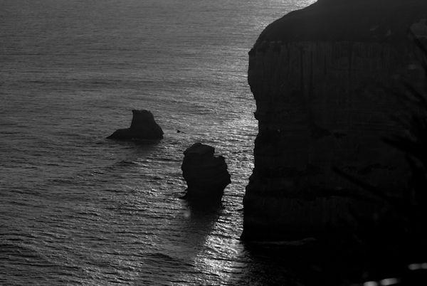 Dunedin coast line