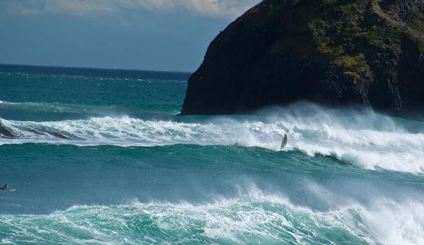 Surfer at Dunedin