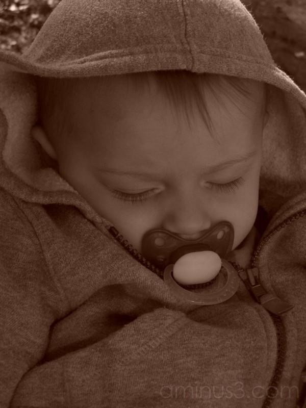 Napping in the Radio Flyer