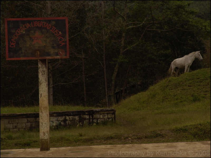 Les Zapatistes jouent bien au basket
