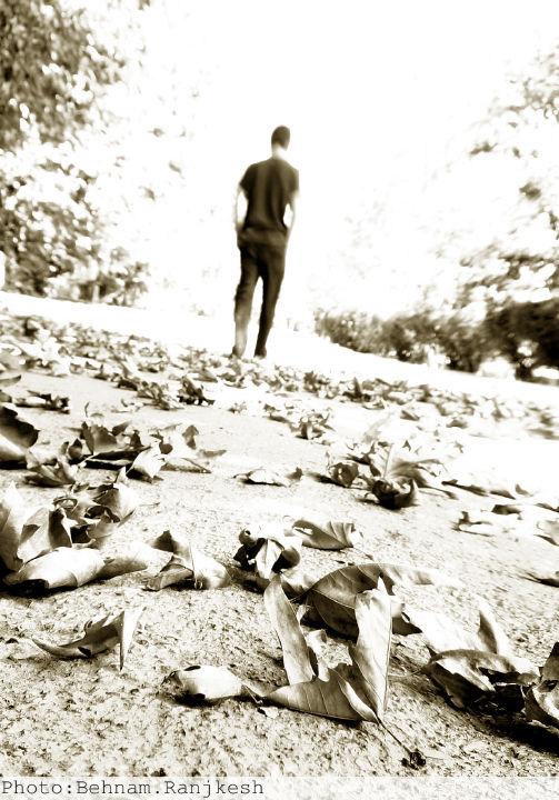 سلف پرتره عکسهای مفهومی