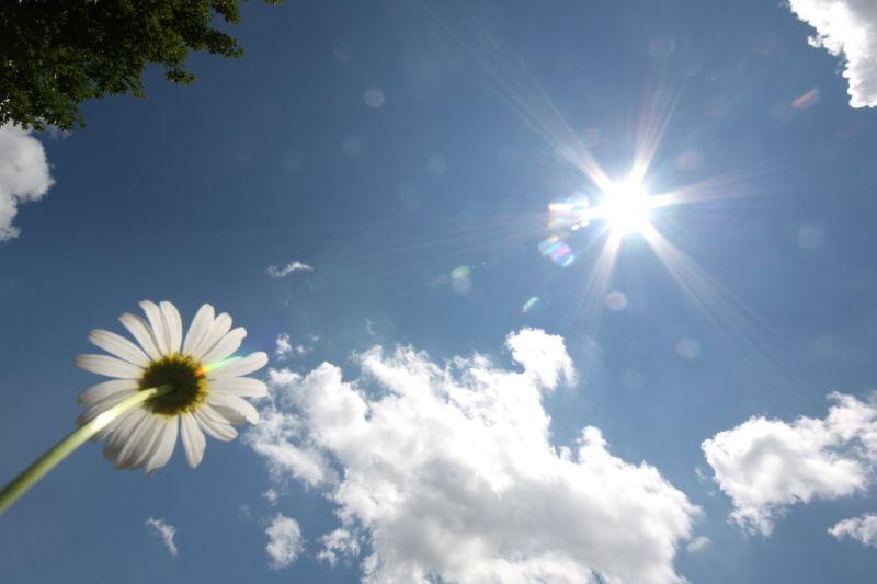 Sun Worshipping