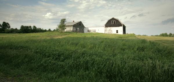 Abandoned Farm, Hudson, Maine