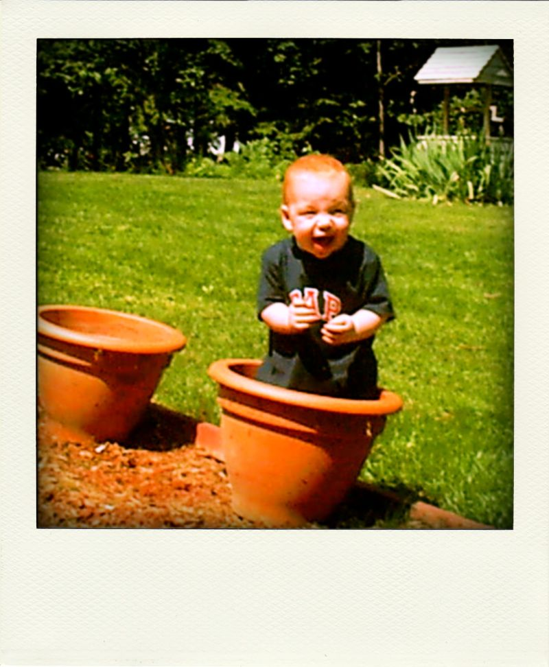 Poladroid: People or Plant Category?