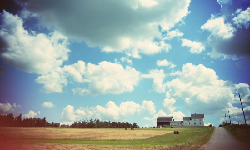 Haslam Farm