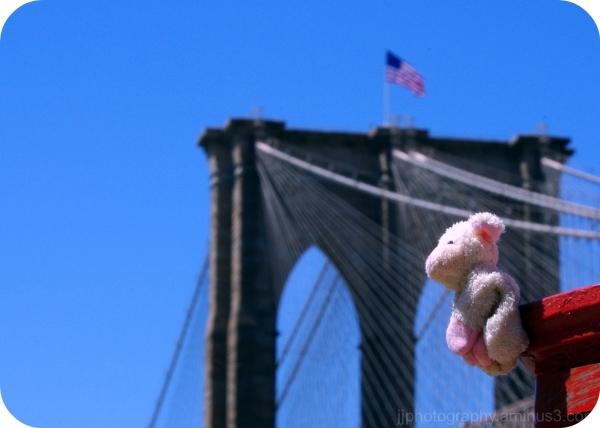 A sheep and a bridge