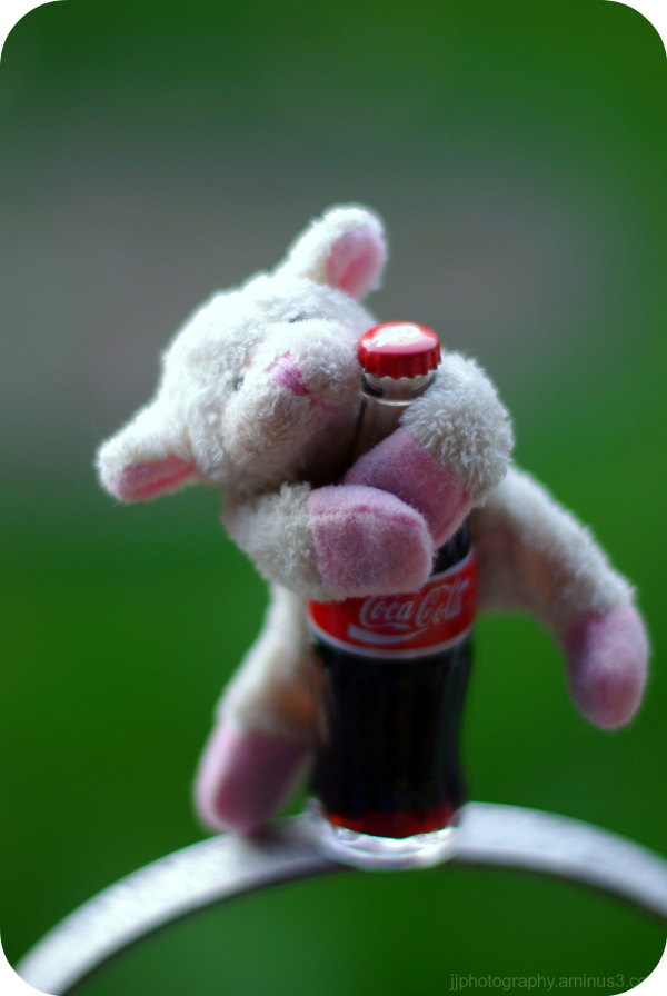 little sheep on a coca cola bottle