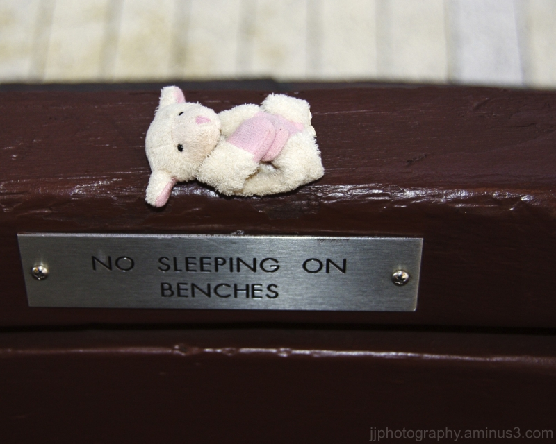 Sleeping toy sheep