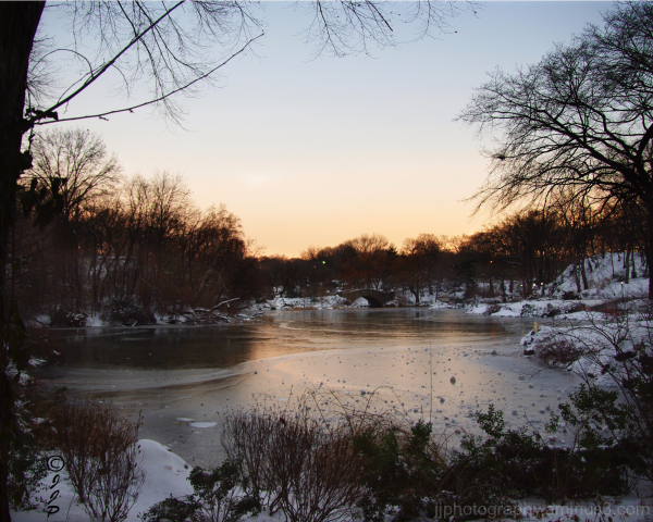 Centrla park pond in winter