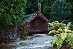 More of the Maori Village