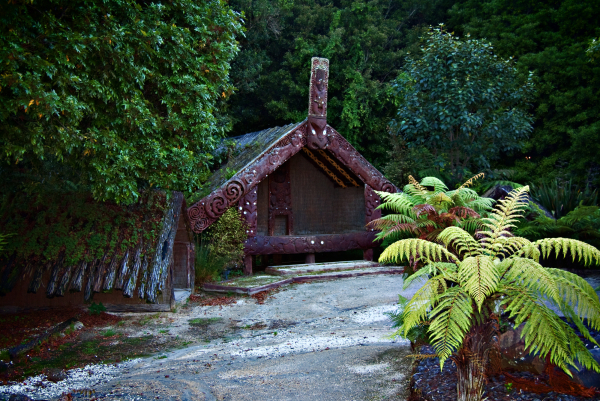 More of the Maori Village