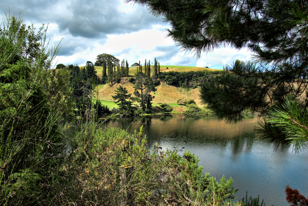 Lookign across the Waikato river