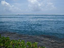 Rough seas of Tahiti