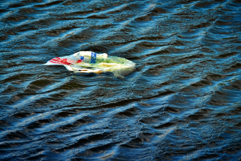 Rubbish bag floating on water