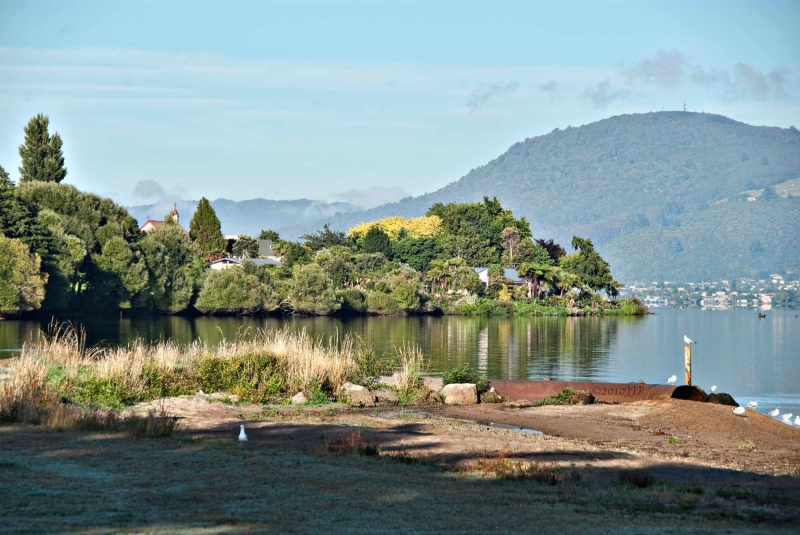 Morning by Lake Rotorua